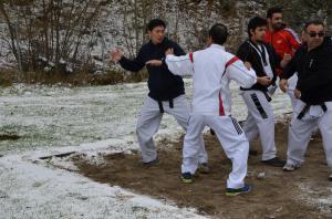 Camp taekwond Charmey 2017 (c) N. Saliju 8571